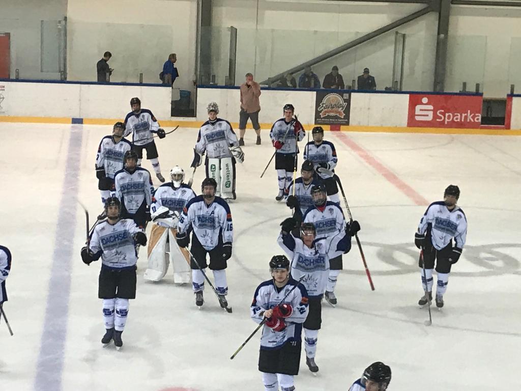 Sportarten für Kinder, Eishockey